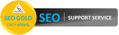 SEO-Support-Service-Gold400