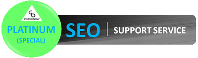 SEO-Support-Service-Platinum400