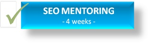 SEO Mentor one to one seo training course